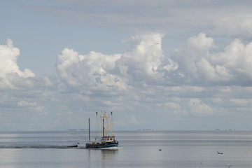Fishing boat is emptying the nets, placed along the Aflsluitdijk in a calm peacfull IJsslemeer