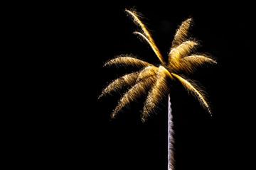 Fotobehang Palm boom Sparkle fireworks in night sky