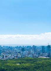 東京風景・青空と緑・渋谷方面
