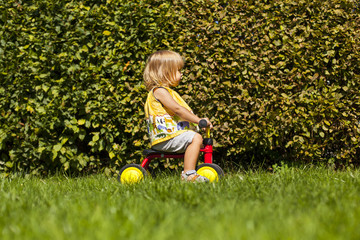 Kleines Kind mit Roller vor grünem Busch. Little child with tricycle in front of green bush.