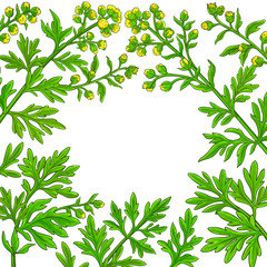 wormwood vector frame