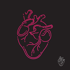 Human heart icon. Line design. Vector illustration EPS 10