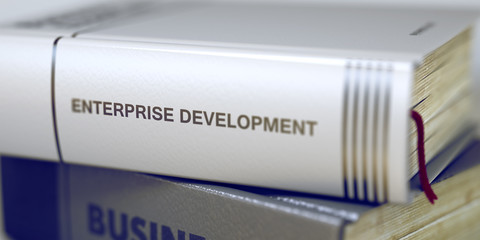 Enterprise Development - Business Book Title. 3D Rendering.