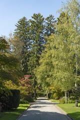 Eingangsweg zum Friedhof Fluntern, Zürich, Schweiz