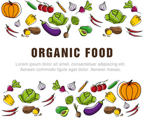 Flyer for organic food. Advertising poster for the grocery store. Seasonal vegetables and healthy food. Used for advertising, label and price tags in the store or Seasonal sales