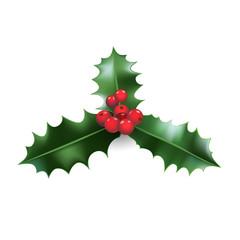 Holly Christmas decor