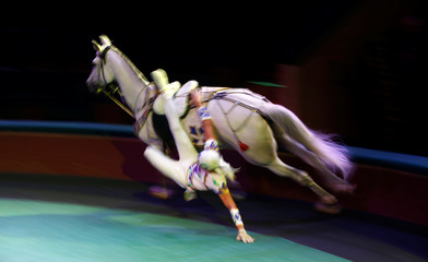 "Artist performs with a horse during the presentation of the new show ""Circuses of the world"" at the Belarus State Circus in Minsk"