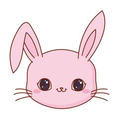 cute face rabbit cartoon animal