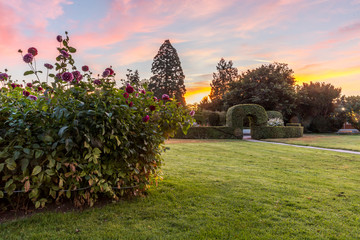 Botanischer Garten in Karlsruhe am frühen Morgen