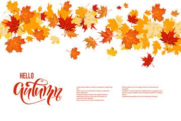 Wall Mural - Autumn maple leaves decor