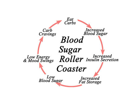 Blood Sugar Roller Coaster.