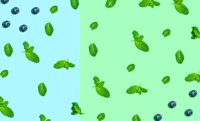 Blueberries and mints on pastel green and blue background