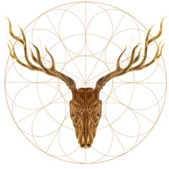 Sketch of deer skull. Vector illustration for tattoo, printing on t-shirts, posters and other items.