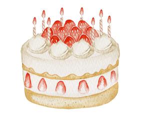 イチゴ ケーキ クリスマス&誕生日