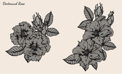 Dortmund rose lace vector set by hand drawing.Beautiful flower on brown background.Rose lace vector art highly detailed in line art style.Flower tattoo for paint or pattern.