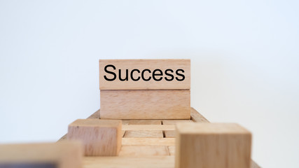 success word written on wood block on white background
