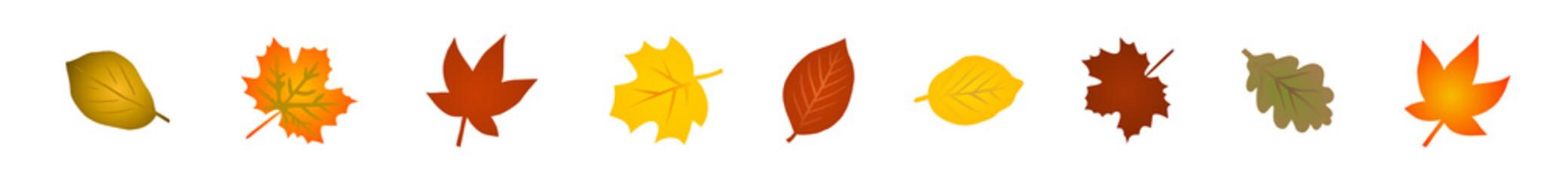 Vektor-Set: Bunte Herbstblätter