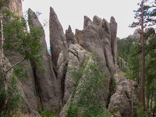 Rock needles in Custer State Park, South Dakota, USA