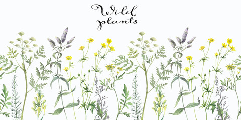 Seamless pattern with watercolor wild herbs and flower