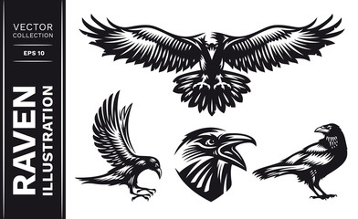 Raven bird collection - vector illustration, logo, emblem black and white, one color.