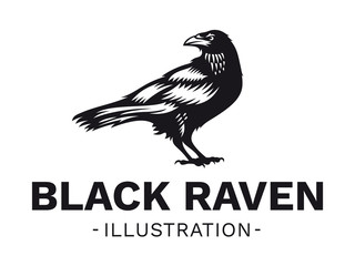 Raven bird - vector illustration, logo, emblem black and white, one color.