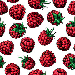 Raspberry seamless pattern. Vector drawing. Isolated berry sketc