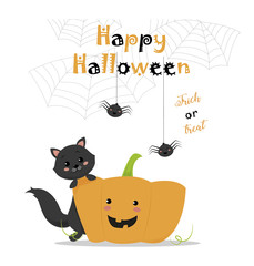 happy halloween with cute cat and pumpkin