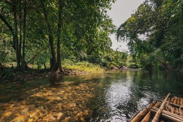 shallow river in the jungle