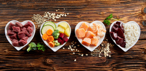 Photo sur Plexiglas Nourriture Panorama of healthy fresh ingredients for pet food