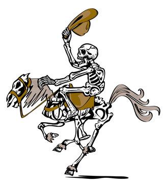 skeleton cheval