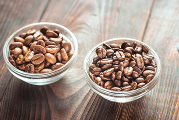Bowls of arabica and robusta coffee beans
