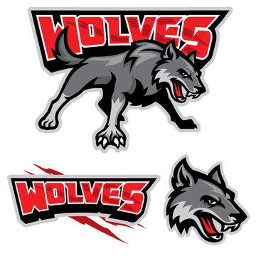 grey wolf mascot