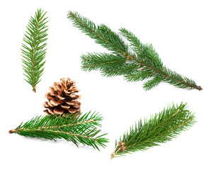 Set of fir branches. Nature Symbol of Christmas and New Year isolated on white background. Green pine, conifer tree.
