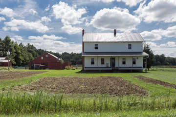 Generic farmhouse and barn with green grass