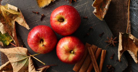 From above shot of layout of shiny ripe apples with autumnal leaves and aromatic cinnamon sticks in daylight