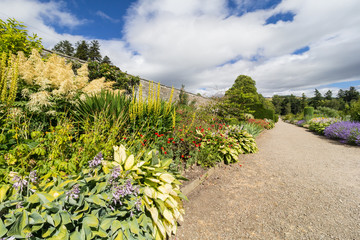 Perennial Herbaceous border in country walled garden