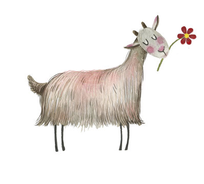 Cute watercolor farm animal on the isolated white background.