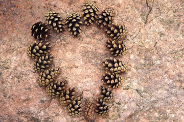 Pine cones placed as a heart looking figure.