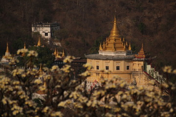 Buddhist monastery and pagoda with golden roof  dome  appearing behind a blooming tree in Sagaying Mandalay, Myanmar, Burma, Asia