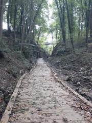 Walkway to nowhere