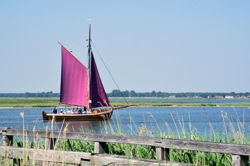 Traditional northern German fishing boat with purple sails carrying a group of tourists near Zingst