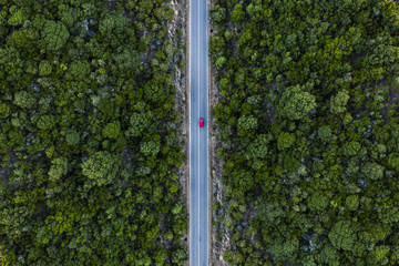 Aerial view of a red car that runs along a road flanked by a green forest.