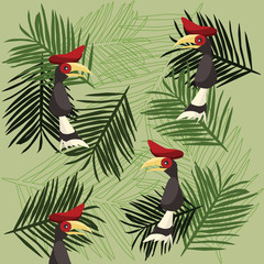 hornbill background vector illustration