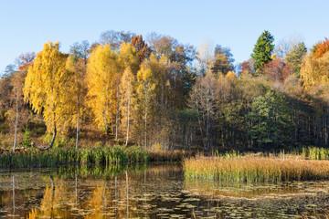 Lake landscape in autumn