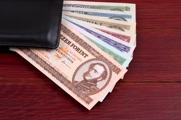 Hungarian Forint in the black wallet