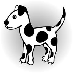 Little cute spotty puppy.
