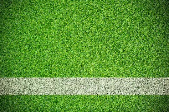 sport field with white stripe