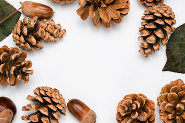 pine cones, chestnuts, acorns and dried leaves on a white background