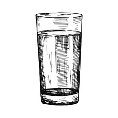 water in a glass cup sketch isolated