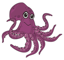 octopus, marine octopus, purple octopus, purple, eight, cartoon, marine life,